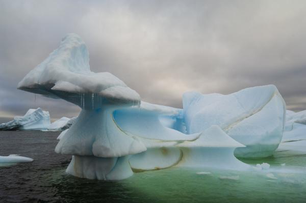 iceberg near pleneau island lemaire channel