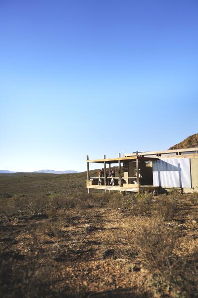 friends on sunny remote safari cabin