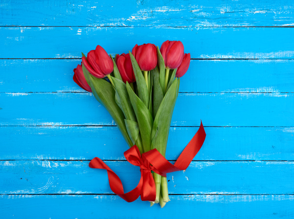 bouquet of red blooming tulips with