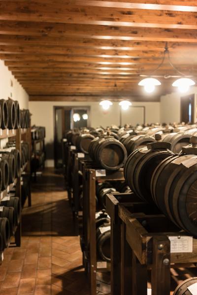 wooden barrels in storage of italian