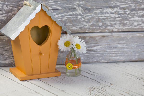 wooden bird house and daisy flowers