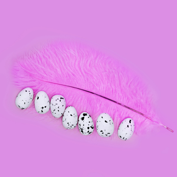 eggs on a pink feather on