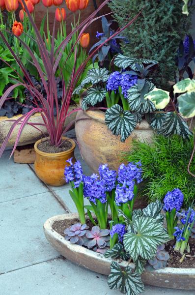 spring garden patio