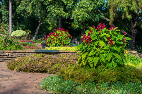 the park of funchal city