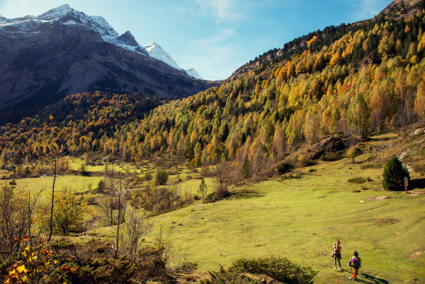 color of autumn at mountain