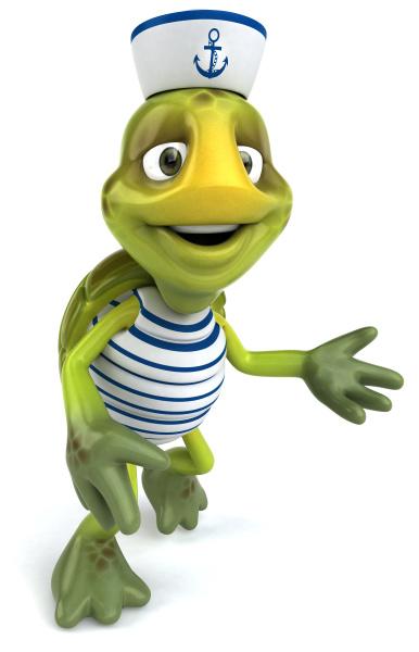 fun, turtle - 28217624