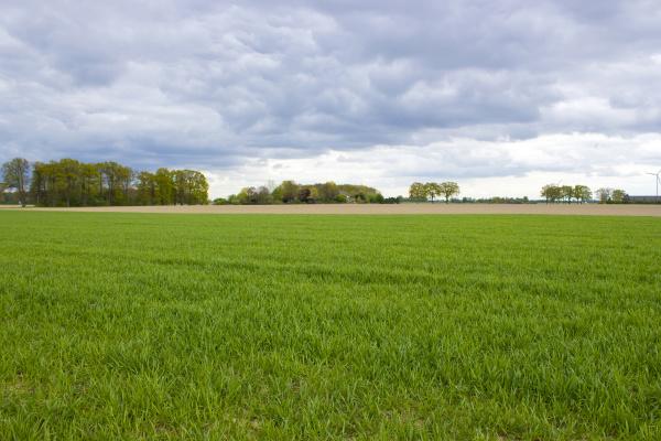 german, countryside, landscape, , lower, rhine, region - 28217756