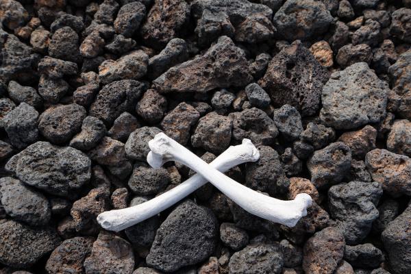 bones on stones