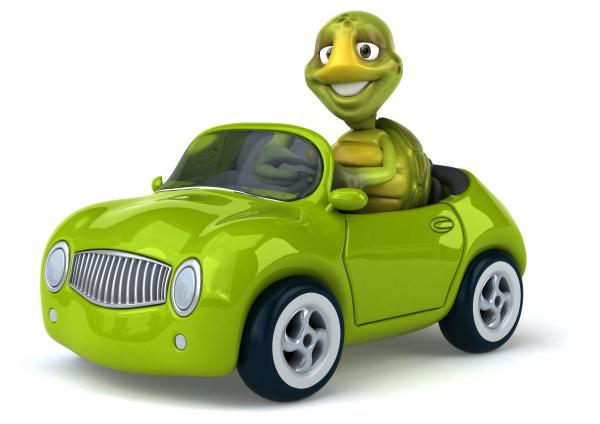 fun, turtle - 28218090