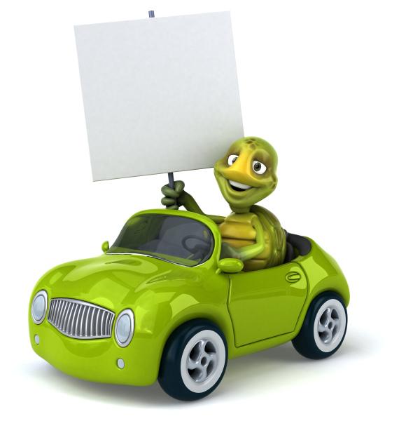 fun, turtle - 28218092