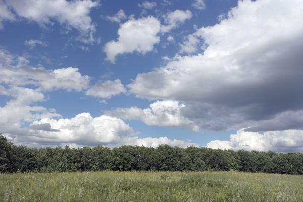 beautiful, summer, landscape - 28238090