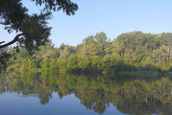 beautiful, summer, landscape - 28238312