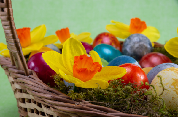 easter, , colored, painted, eggs, in - 28238088