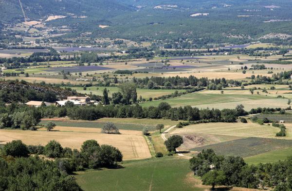 patchwork, of, farmer, s, fields, in - 28238449