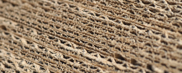 wide, brown, corrugated, cardboard, texture, background - 28240331