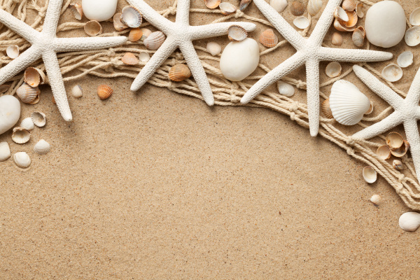 white starfishes on sand background