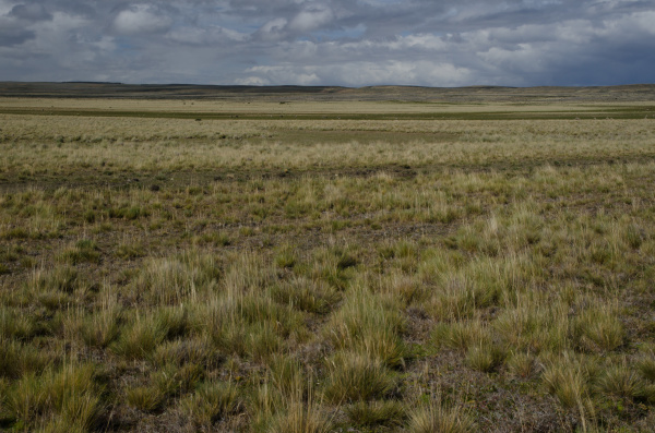 view of a plain in the