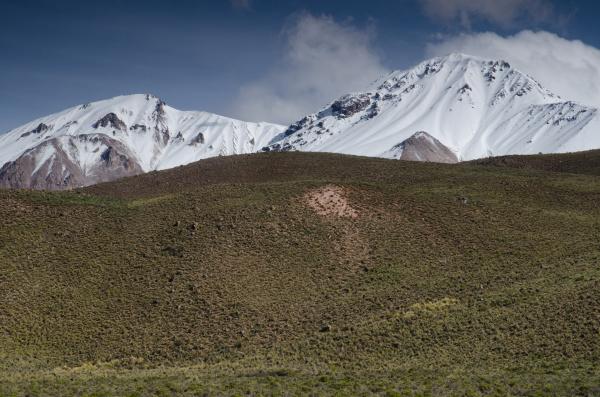 snowy peaks in the lauca national