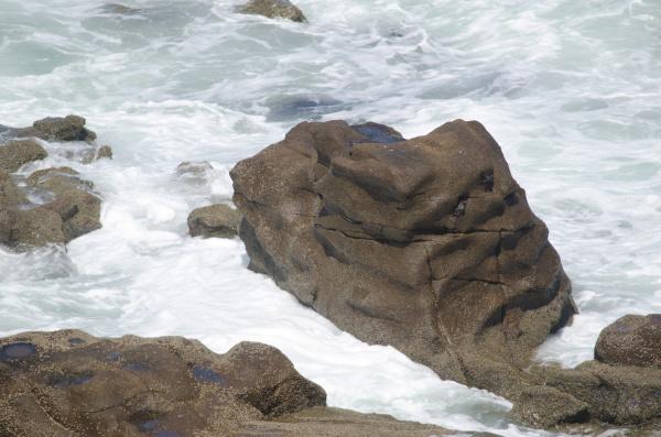 rocky coast in las cuevas of