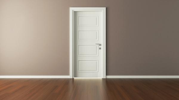 white american door 3d render