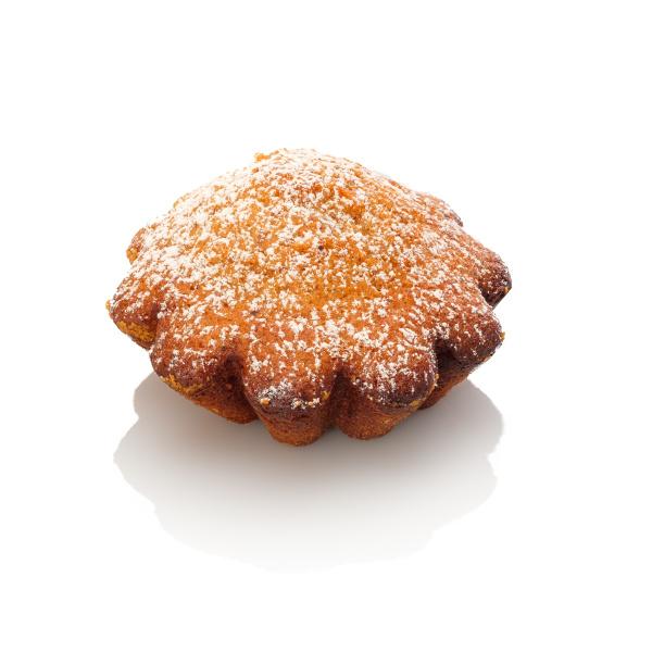 little nut cake with powder sugar