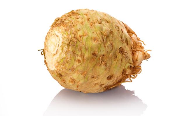 celery root vegetable