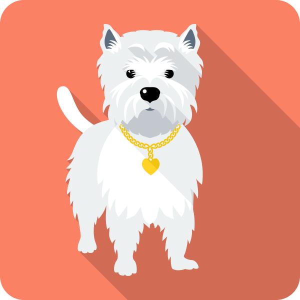 dog west highland white terrier icon