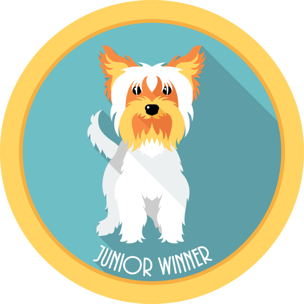 dog junior winner medal icon flat