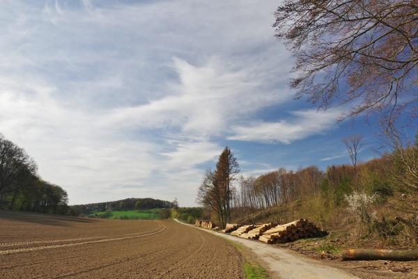 landscape near waehrentrup oerlinghausen