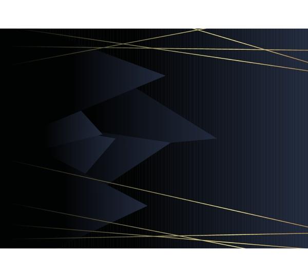 minimalist black premium exclusive background