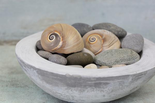maritime decoration in conrete bowl