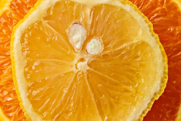 close up slice of orange