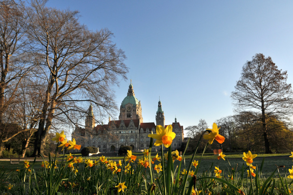 new city hall of hannover in