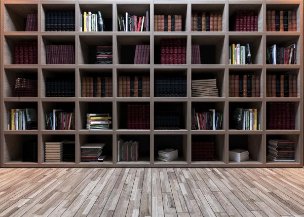 modern wooden bookshelf with wooden parquet