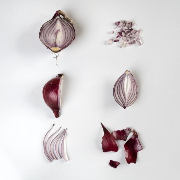 onion s evolution
