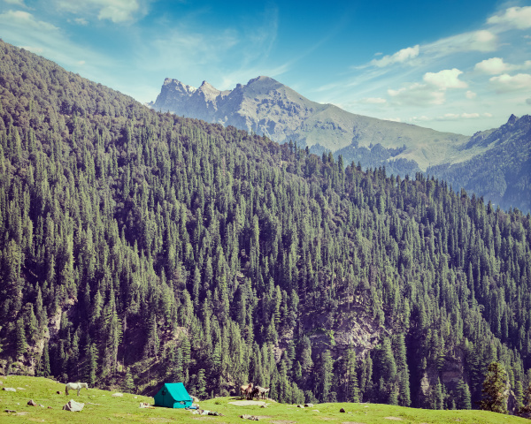 camp tent in mountain