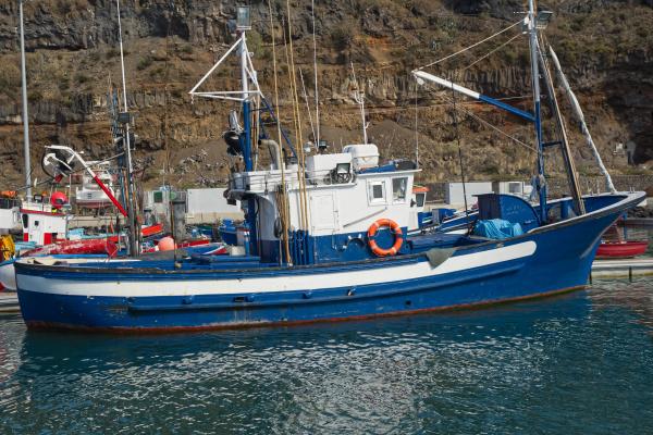 boats at tazacorte la palma