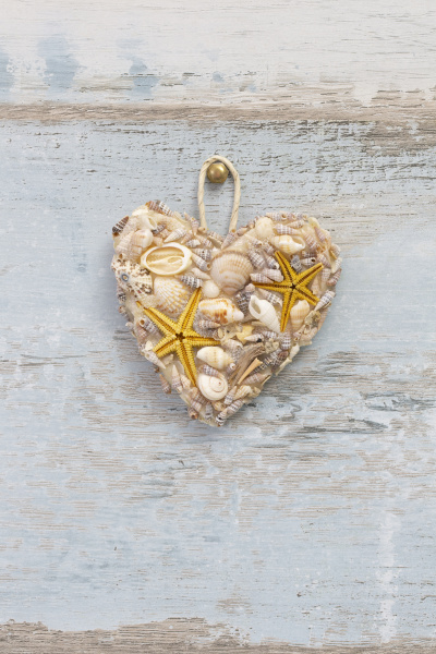 sea shell heart on old wood