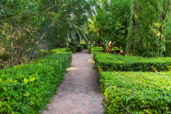 mediterranean garden with footpath