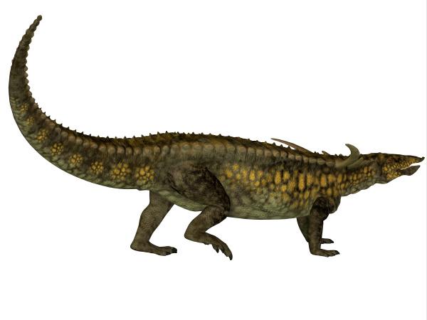desmatosuchus profile