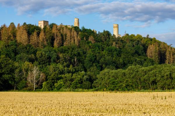 the brandenburg castle at herleshausen in