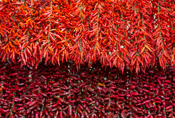 red chili peppers on string in