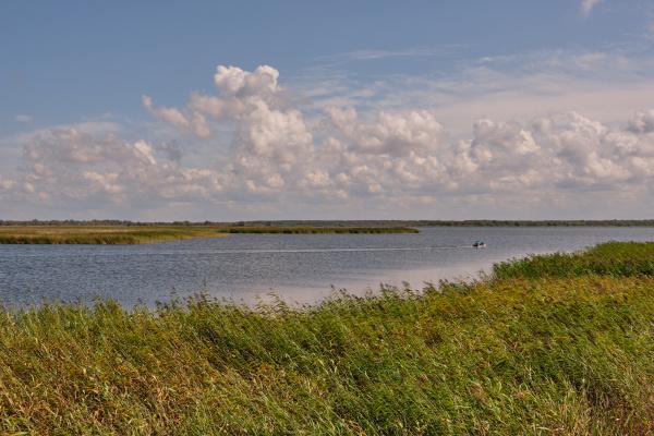 peaceful liepaja lake in summer