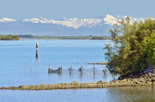 lagoon of grado and carnic alps