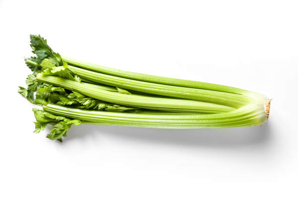 celery branch bunch isolated on white