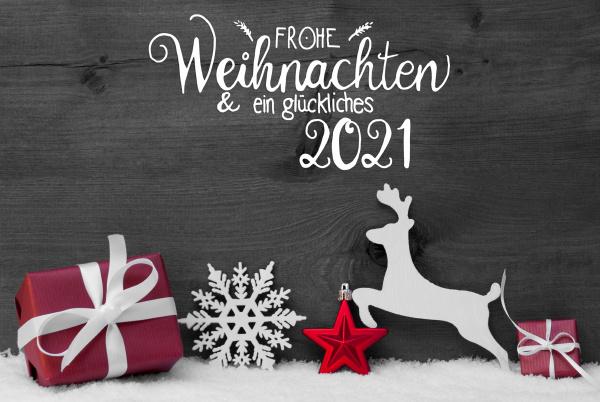 gift deer snow ball glueckliches 2021