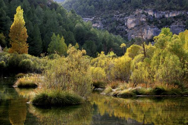spain province of guadalajara scenic view