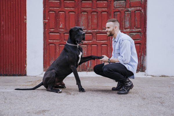 young man teaching his dog outdoors