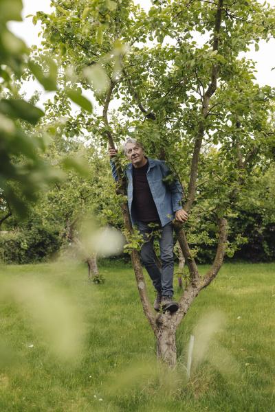 senior man climbing in a tree