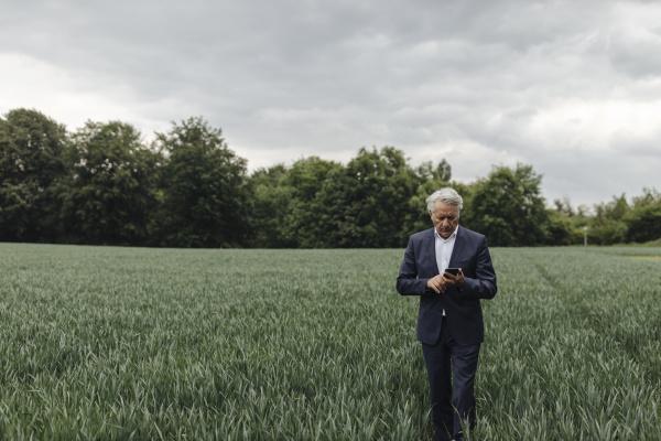 senior businessman using smartphone on a